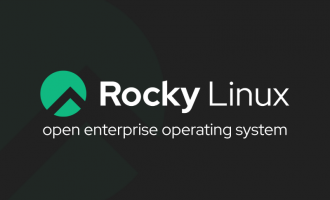 Logo of Rocky Linx white text with green font New Kids in the Block